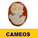 CAMEOS